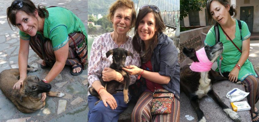Spotlight on Rishikesh Animal Care