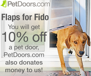 ISDF is happy to announce a new partner – Flaps for Fido