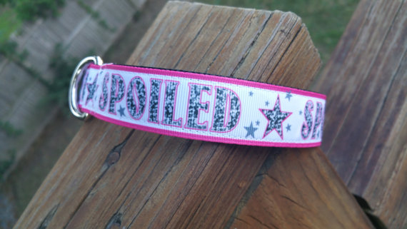 Handmade leashes and collars for your pampered pooch!