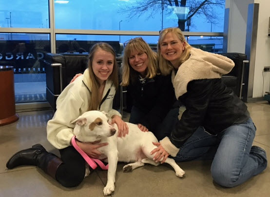 Houston Rescue – Whitey finds her fur-ever home in Chicago