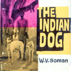 Desi (Indian) Dog Lovers – a Very Interesting Read